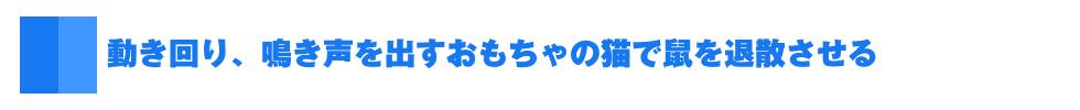 izu_03.jpg